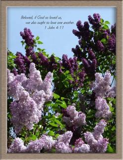 NEW Commandment in John 13:34  -Is Showing Biblical Love
