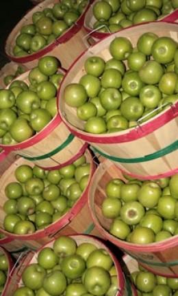 Green Apples In Basket