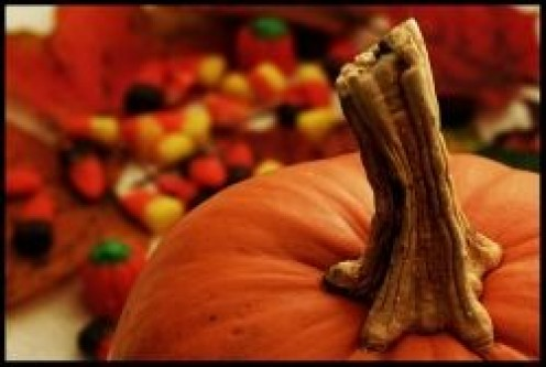 Have a Great Halloween!