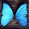 sbilden78 profile image
