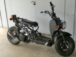 Why You Should Buy a Honda Ruckus