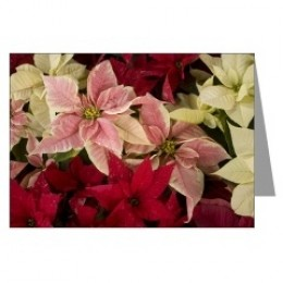 greeting cards, note cards, christmas cards, christmas ornaments,chris scroggins, birthday cards,