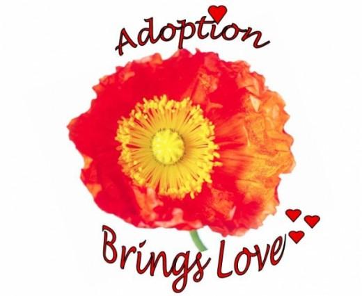 Orange Poppy Design - Adoption Brings Love