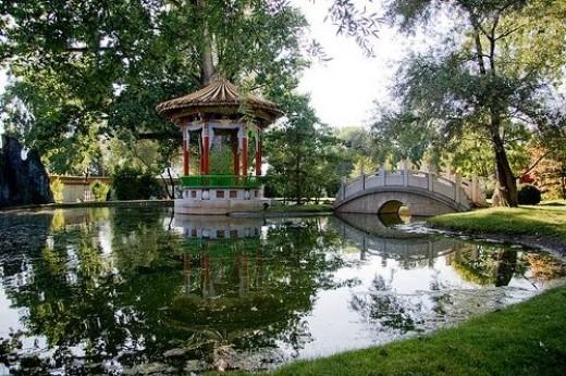 Feng Shui Garden Pond
