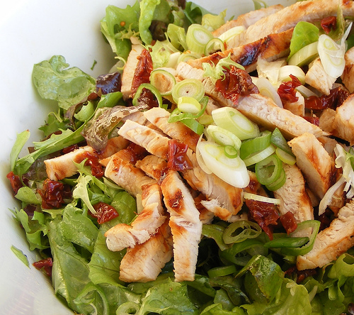 Roasted Turkey Strips on Garden Green Salad (Photo courtesy by FotoosVanRobin from Flickr)