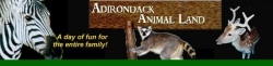 Adirondack Animal Land