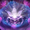 lovegrowth lm profile image