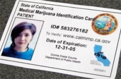 How to Apply for a Medical Marijuana ID Card