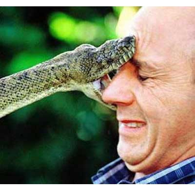 When you're having a bad day, some times is nice to think... Well, at least there isn't a monster snake biting me in the face...