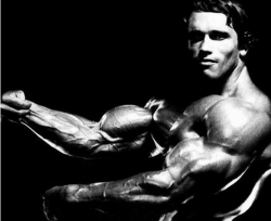 Ladies, You won't look like Arnie, but come on he is luvvvvvly