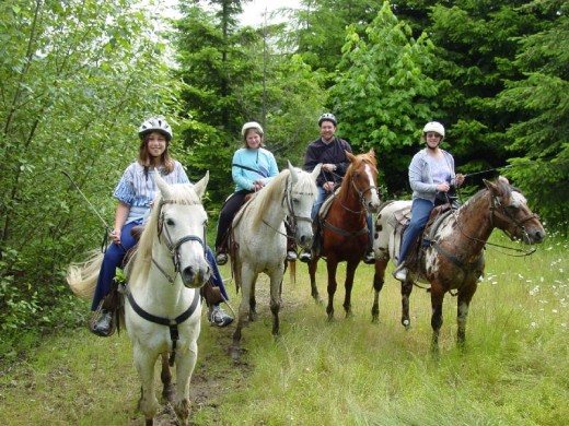 Horseback Riding in Mt Rainier