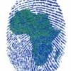 ZablonMukuba profile image