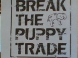 Breaking the Puppy Trade