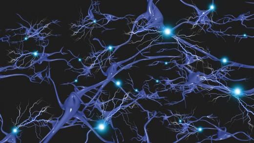 BWRT - Brain Functioning