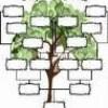 Family Tree Climber