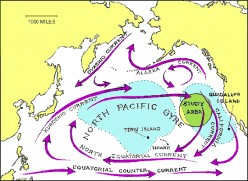 Pacific Ocean Garbage Patch, the Continent of Garbage