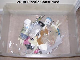 Total plastic consumption for one year, by blogger Envirowoman.