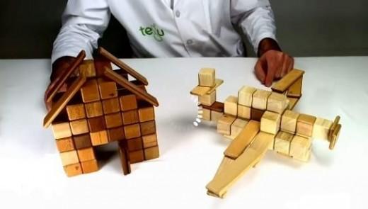 Tegu Creations - A House & an Airplane