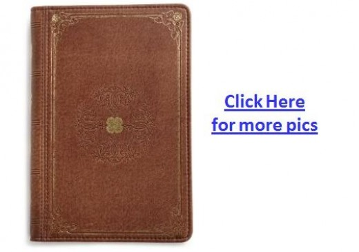 Verso Prologue Designer Kindle Fire Cover - Tan Color