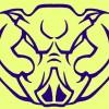 pigwear profile image