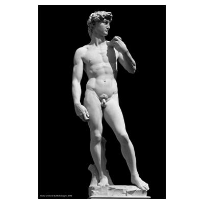 Sculpted by Michelangelo Bounarroti in 1504.