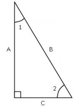 Fig. 1 - Right Triangle