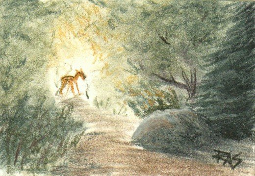 ACEO deer -- Light in the Forest, Derwent Tinted Charcoal on white, Robert A. Sloan