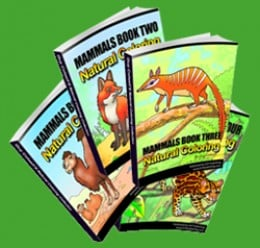 Download Animal Coloring Books Now