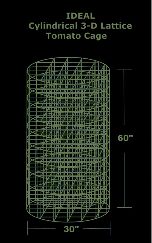 Drawing by Robert Kernodle showing ideal design of cylindrical 3-D lattice tomato cage.