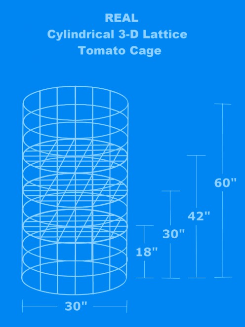 Drawing by Robert Kernodle showing practical design of a cylindrical 3-D lattice tomato cage.