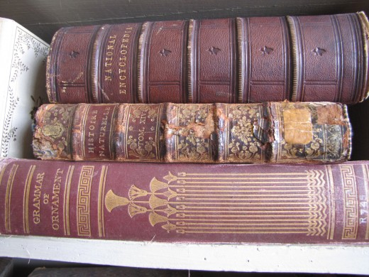 I love the old leather bound books or ones with gilt lettering.