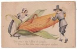 Pilgrims and Corn Thanksgiving Postcard