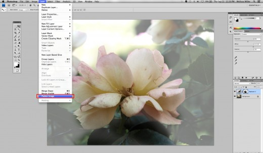Flattening the image will allow changes to effect the entire image as opposed to just single layers