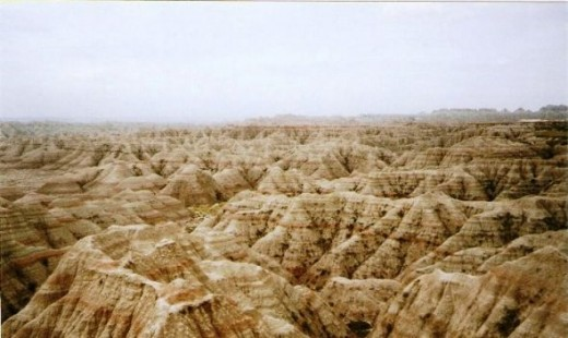 A view of the vastness of the Badlands