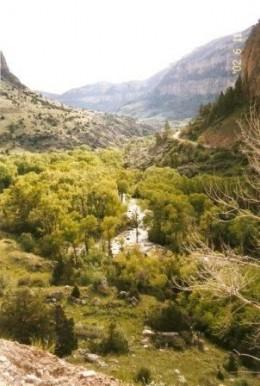 Big Horn National Forest