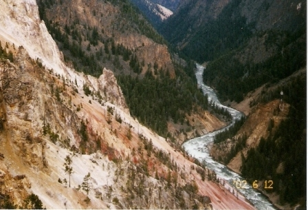 The yellow canyon walls that give Yellowstone its name.