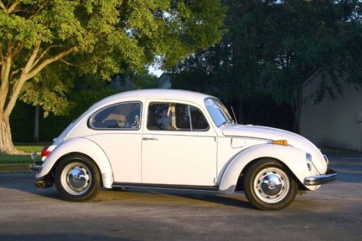 My sister had a blue VW. All of us piled in to it going to grandma's for Christmas and followed Mom and Dad. She hit a skunk, which filled up that little thing fast, which started my brother's nose to bleed, and it was freezing cold!