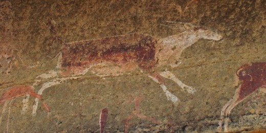 San/Bushman Rock art, Ukalamba Drakensberg, South Africa. It shows an Eland.
