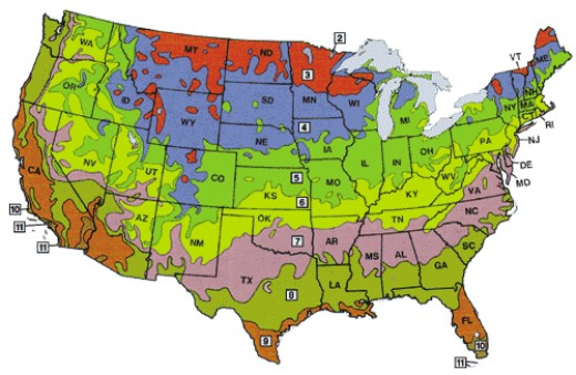 These are the plant hardiness zones of the USA