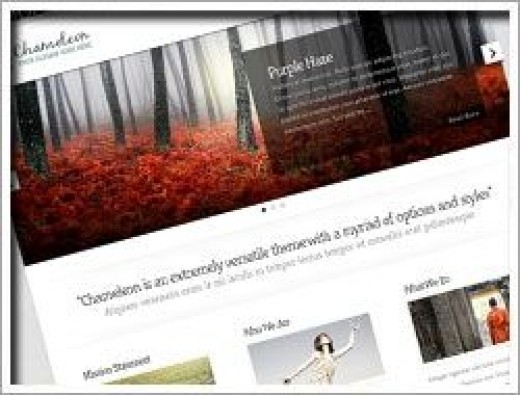 Wordpress Chameleon Theme