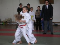 Judo: The Gentle Way