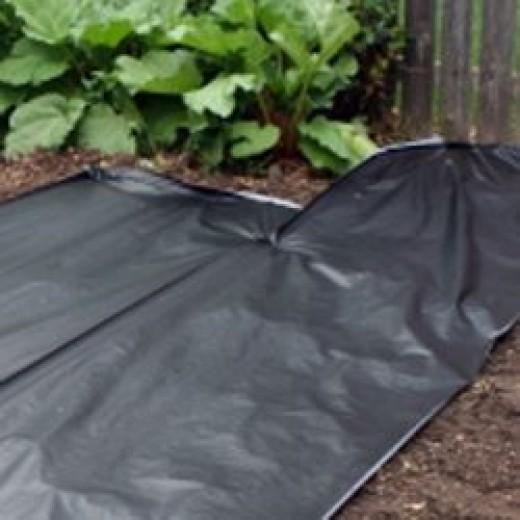 Install Landscape Fabric or Plastic