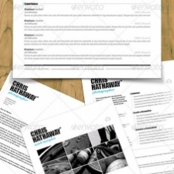2013 Best Resume Templates, Samples and Tips to Help You Land the Job!