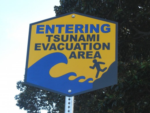Sign indicating entry into an area vulnerable flooding by tsunami