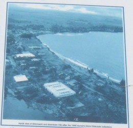 Blow-up of  aerial photo of coast line by Shinmachi neighborhood in Hilo, Hawaii following 1946 tsunami.