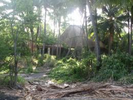 Jungle covered remains of original Sea Mountain Resort at Panalu'u, Hawaii
