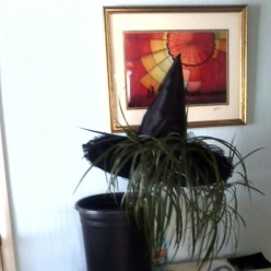 Harry Potter Witch's Hat