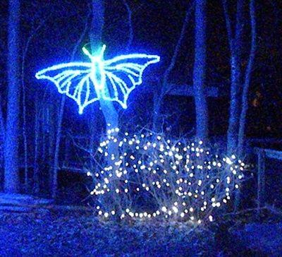 Lighted Moth