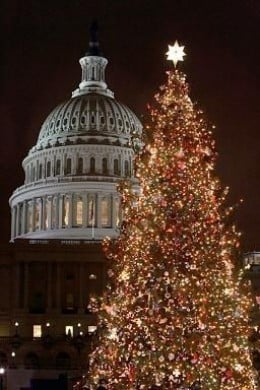 Washington DC Xmas tree