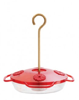 10 oz. Hummingbird Feeder with 4 ports and perches.